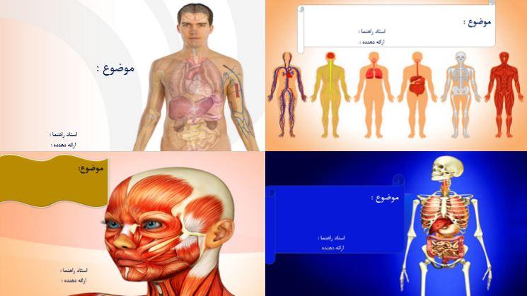 دانلود مجموعه قالب پاورپوینت پزشکی (آناتومی)