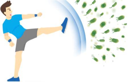 دانلود تحقیق تاثیر ورزش بر کرونا